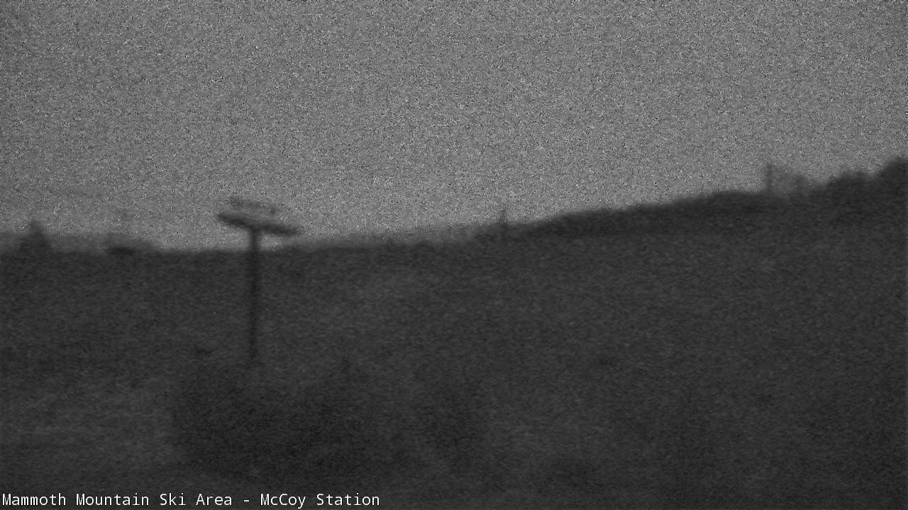 MC Coy Station top of Chair 1 Webcam Image